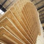 Плита ОСП 3 - характеристики и особенности монтажа листового материала 1